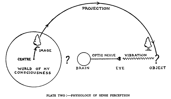 Plate 2, Physiology of sense-perception. Image,                                 projection, object, vibration, eye, optic nerve, brain.